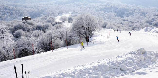 滑雪票务系统 滑雪场会员IC卡系统